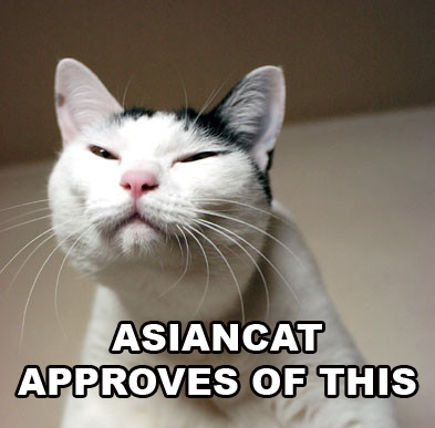 AsianCat approves of this.