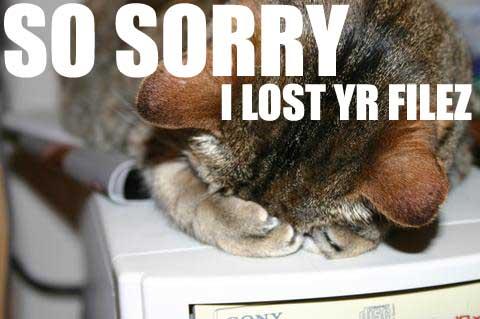 So Sorry I Lost Yr Filez