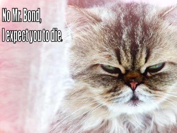 No, Mr. Bond, I expect you to die.