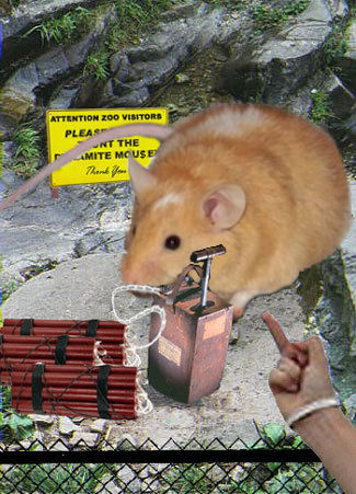 Do Not Taunt The Dynamite Mousey