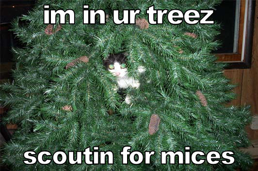 im in ur treez scoutin for mices