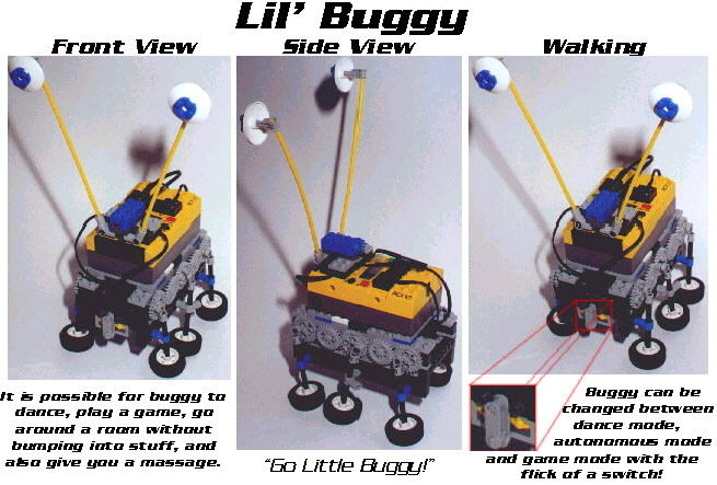 Little Buggy