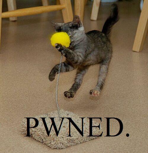 Pwned.