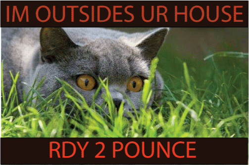 I'm outsides ur house, rdy 2 pounce