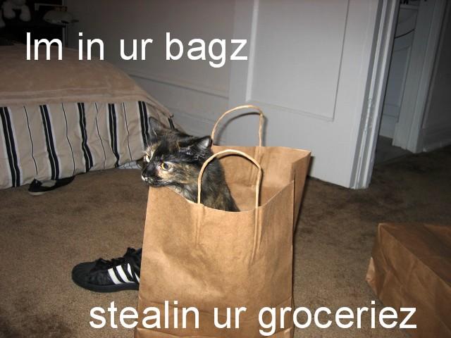 Im in ur bagz stealin ur groceriez
