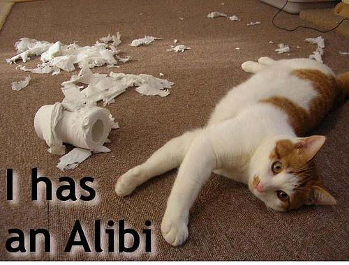 I has an Alibi!