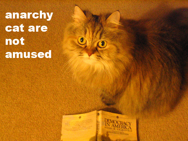 Anarchy cat are not amused