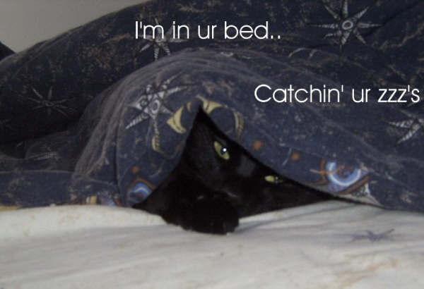 im in ur bed catchin ur zzz's