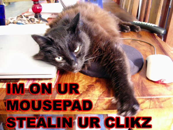im on ur mousepad stealin ur clikz