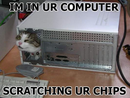 Im in ur computer scratching ur chips