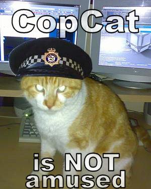 CopCat is NOT amused