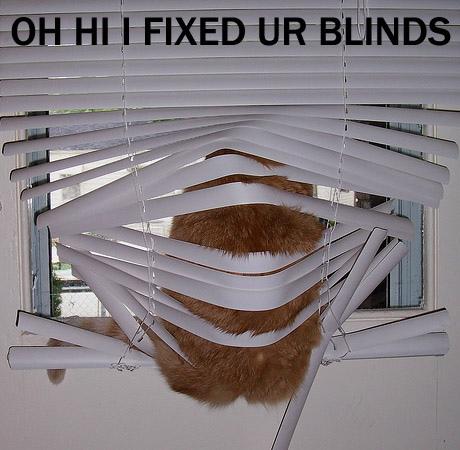 Oh hi, I fixed ur blinds