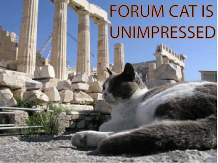 Forum Cat is Unimpressed