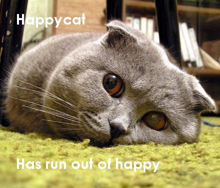 Happycat has run out of happy.