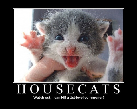 Housecats: Watch out, I can kill a 1st level commoner