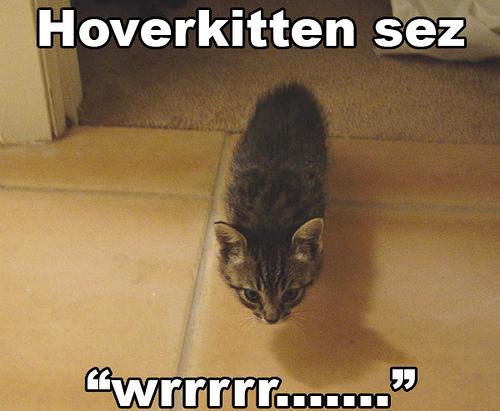 """Hoverkitten sez """"Wrrrrr......."""""""