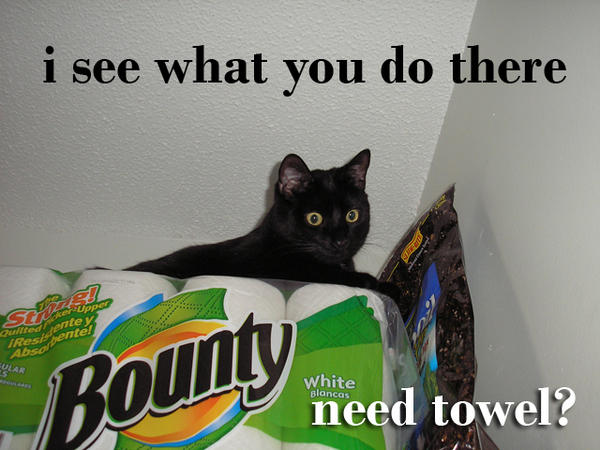 i see what you do there. need towel?