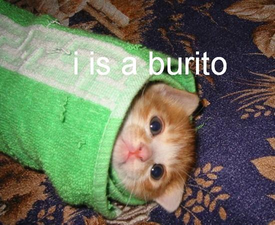 i is a burito