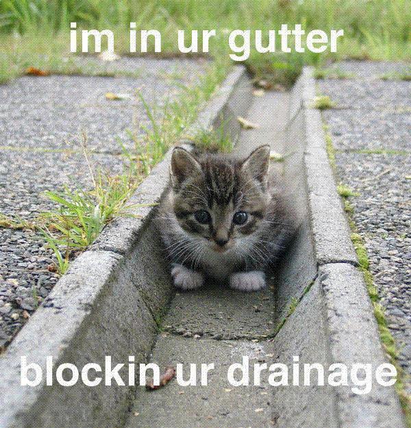 im in ur gutter blockin ur drainage
