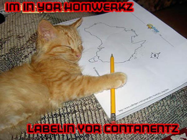 im in yor homewerks labelin yor contanentz