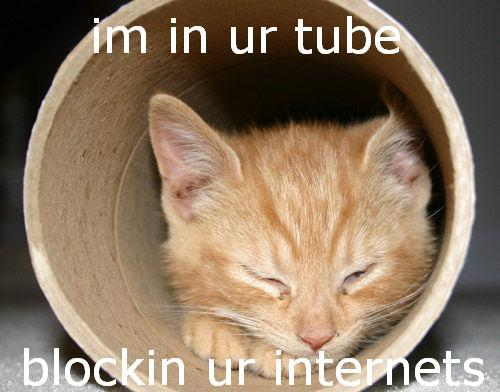 im in ur tube blockin ur internets