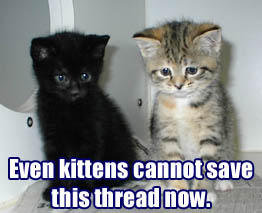 Even kittens cannot save this thread now.