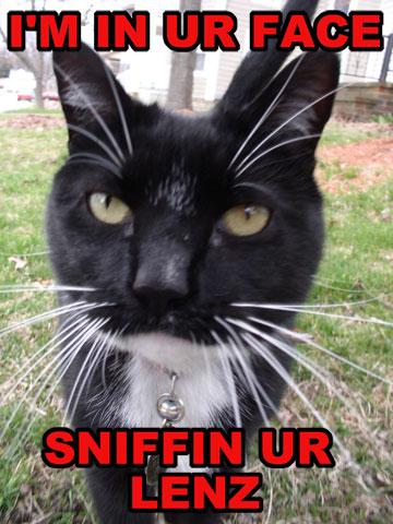 I'm in ur face sniffin ur lenz