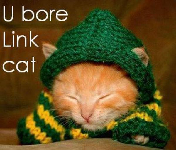 U bore Link cat