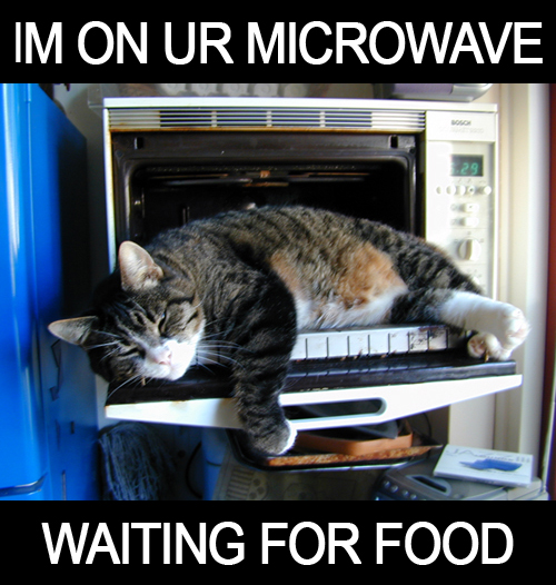 im on ur microwave waiting for food