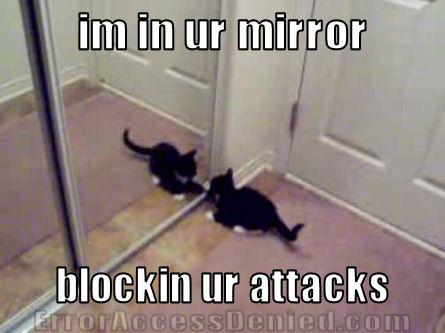 im in ur mirror blockin ur attacks