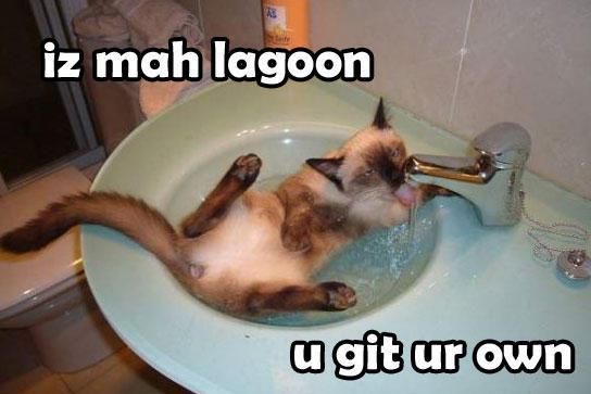 iz mah lagoon, u git ur own