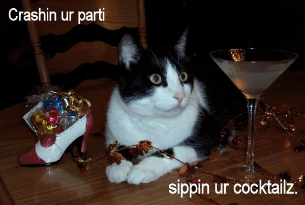 Im crashin ur parti, sippin ur cocktailz