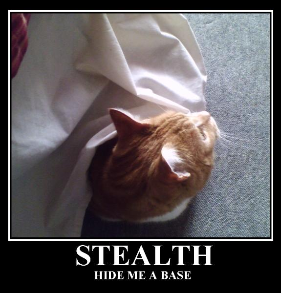 Stealth: Hide me a base
