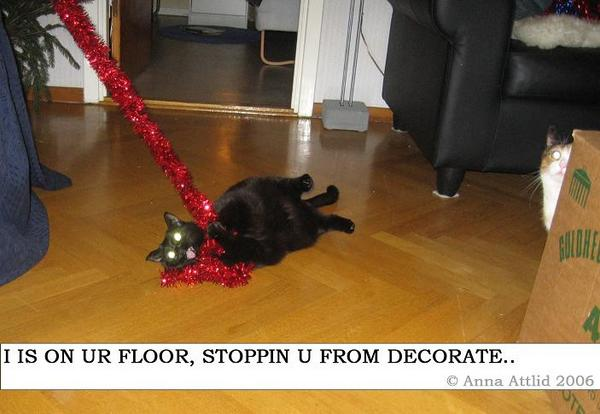 I is on ur floor, stoppin u from decorate..