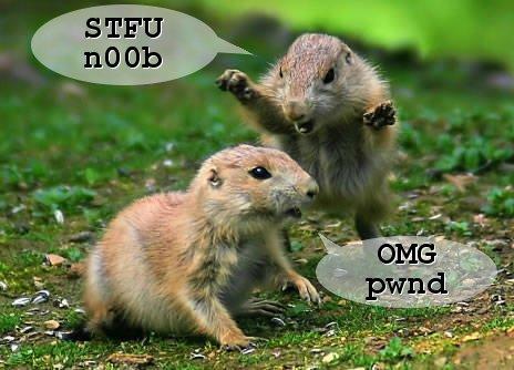 """Gopher """"STFU, n00b"""", """"OMG Pwnd"""""""