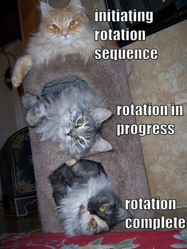 initiating rotation sequence... rotation in progress... rotation complete.