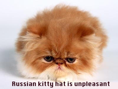 Russian kitty hat is unpleasant