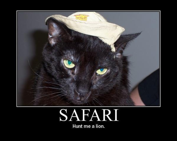 Safari: Hunt me a lion