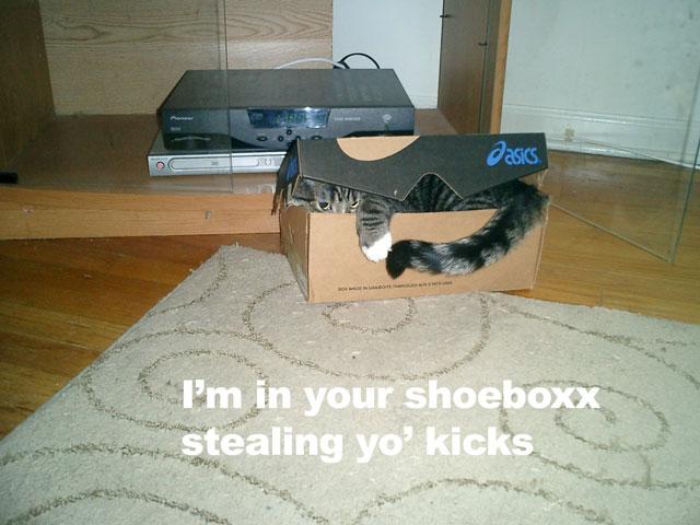 I'm in your shoeboxx stealing yo' kicks