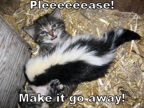 Pleeeeeeeease! Make it go away!