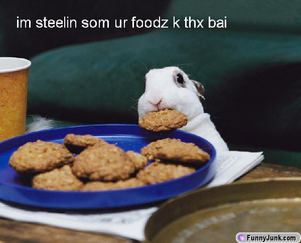Im steelin som ur foodz k thx bai