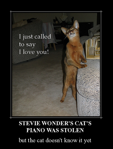 Stevie Wonder's Cat's Piano Was Stolen