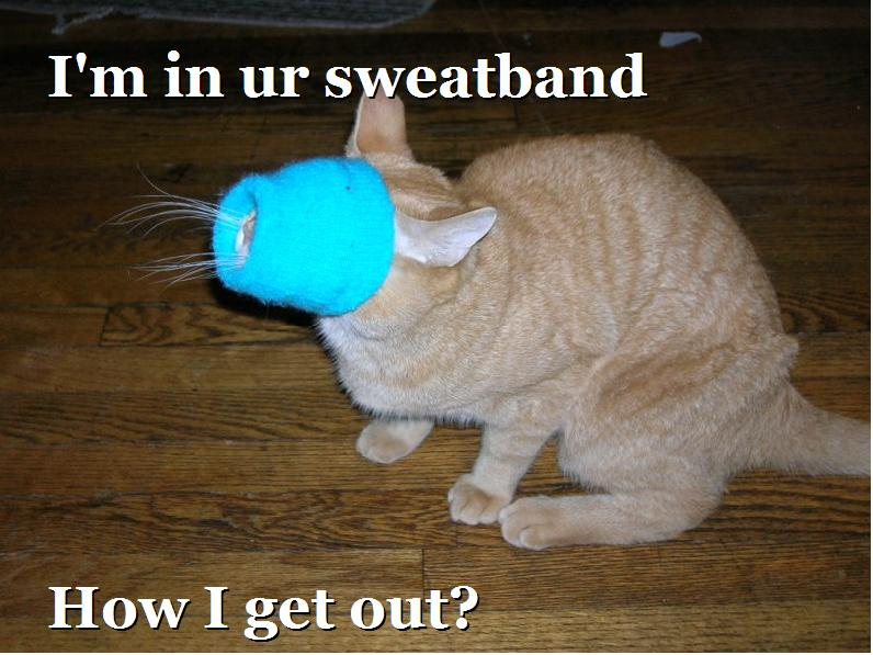 I'm in ur sweatband. How I get out?
