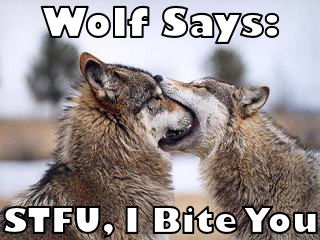 Wolf says: STFU, I Bite You
